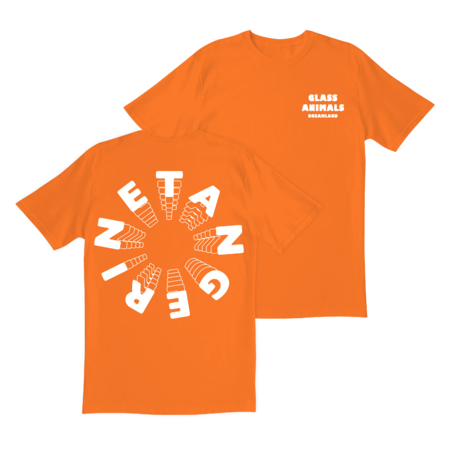 Glass Animals: ORANGE TANGERINE T-SHIRT