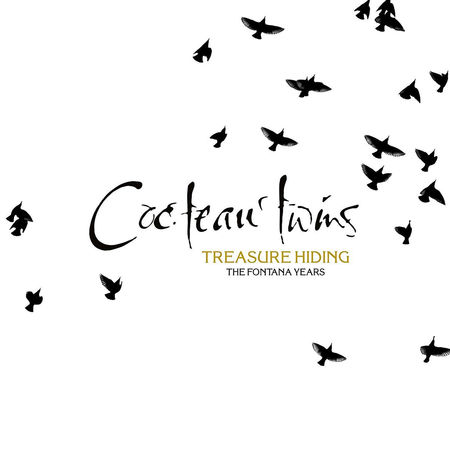 Cocteau Twins: Treasure Hiding: The Fontana Years
