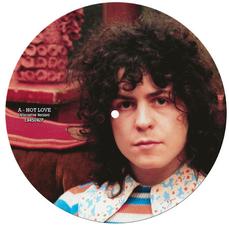 T. Rex: Hot Love: Limited Edition Picture Disc 7