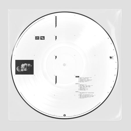 Ben Howard: COLLECTIONS FROM THE WHITEOUT: EXCLUSIVE PICTURE DISC VINYL