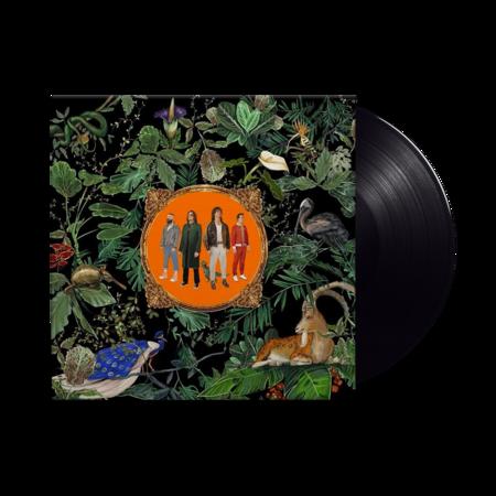 Don Broco: Amazing Things: Black Vinyl LP