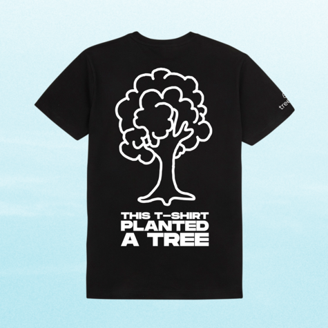Disclosure: Big Tree T - This T Planted A Tree