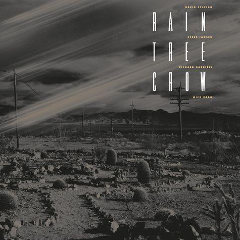 David Sylvian: Rain Tree Crow (LP)