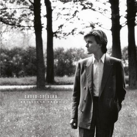 David Sylvian: Brilliant Trees (LP)