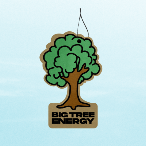 Disclosure: Disclosure - Big Tree Air Freshener