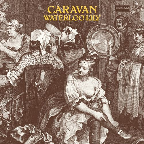 Caravan: Waterloo Lily