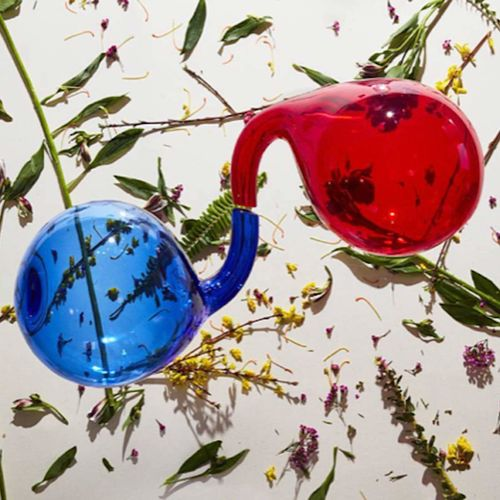 Dirty Projectors: Lamp Lit Prose: Coloured Vinyl
