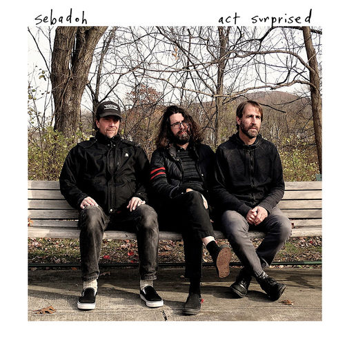 Sebadoh: Act Surprised