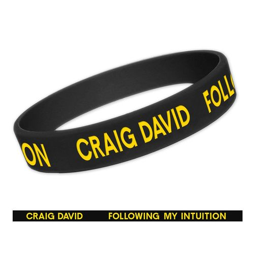 Craig David: FMI Wristband