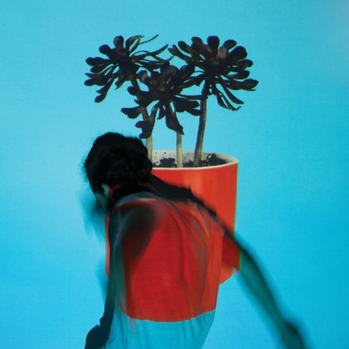 Local Natives: Sunlit Youth