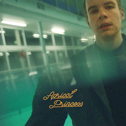 Rex Orange County: Apricot Princess: Orange Vinyl