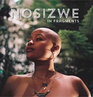 Nosizwe: In Fragments