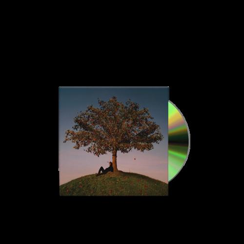 slowthai: Tyron: CD