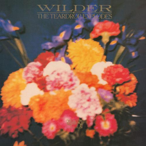 The Teardrop Explodes: Wilder