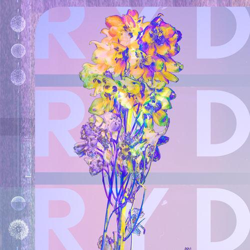 RYD: RYD