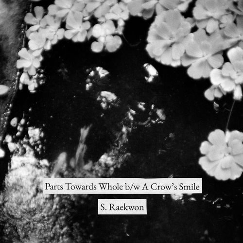 S. Raekwon: Part Towards Whole b/w A Crow's Smile