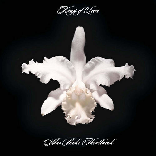 Kings Of Leon: Aha Shake Heartbreak (CD)