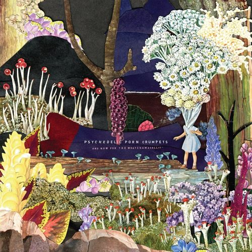 Psychedelic Porn Crumpets: AND NOW FOR THE WHATCHAMACALLIT
