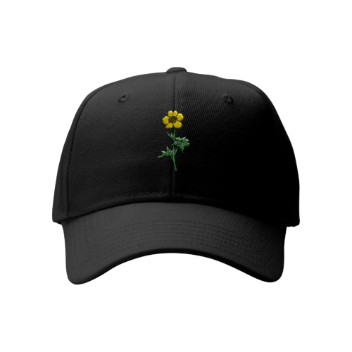 Sam Smith: Buttercup Cap