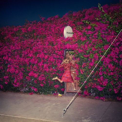 Feist: Pleasure