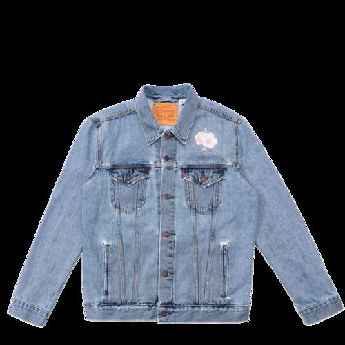 Shawn Mendes: Festival Tour Levi's Denim Jacket
