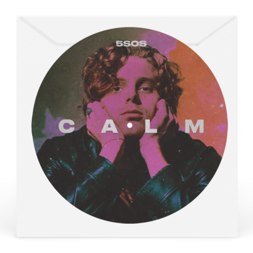 5 Seconds of Summer: Luke Remix Track Picture Disc
