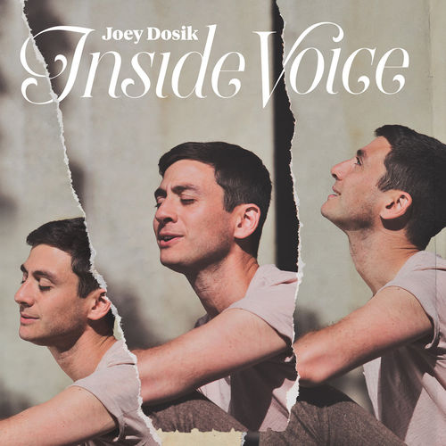 Joey Dosik : Inside Voice: Stone White Vinyl LP