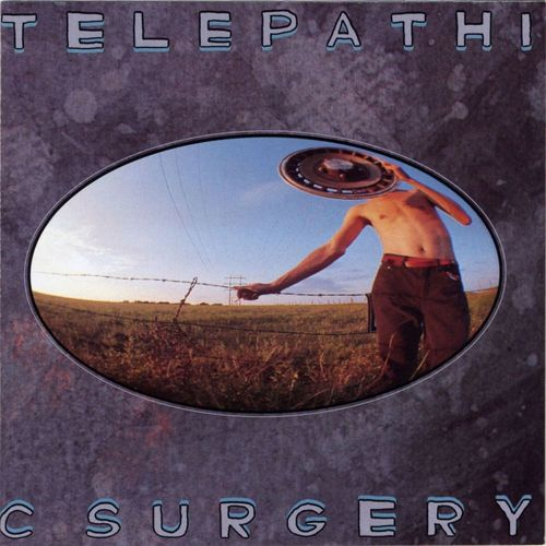 The Flaming Lips: Telepathic Surgery