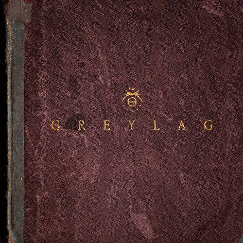 Greylag: Greylag