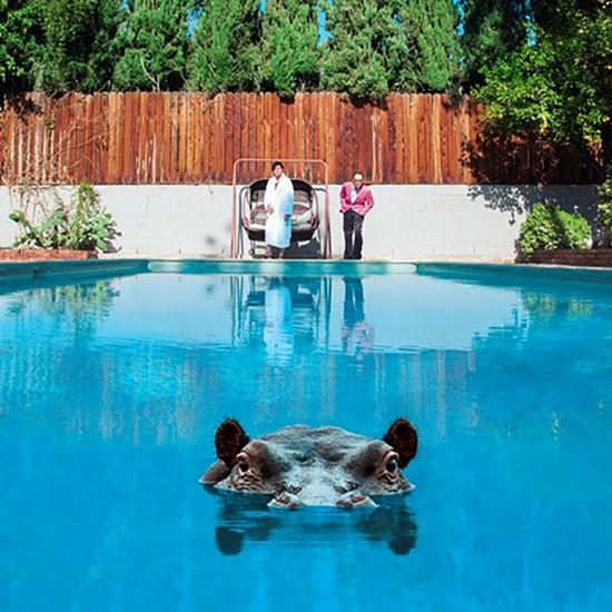 Sparks: Hippopotamus