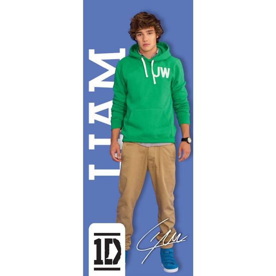One Direction: One Direction Liam Door Poster