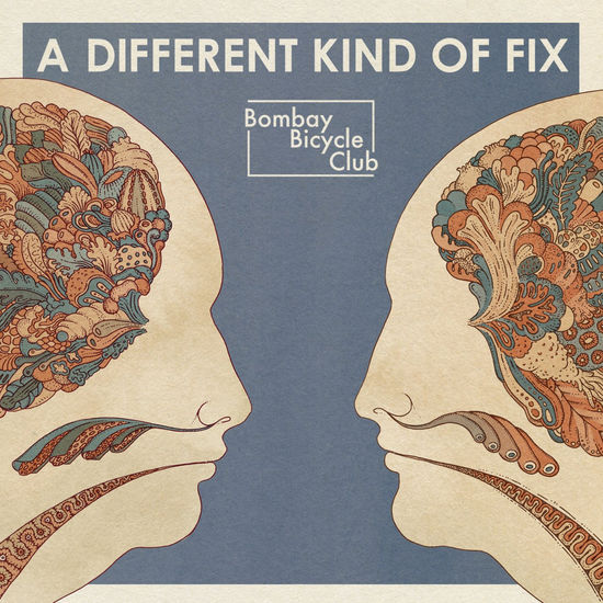 Bombay Bicycle Club: A Different Kind Of Fix LP