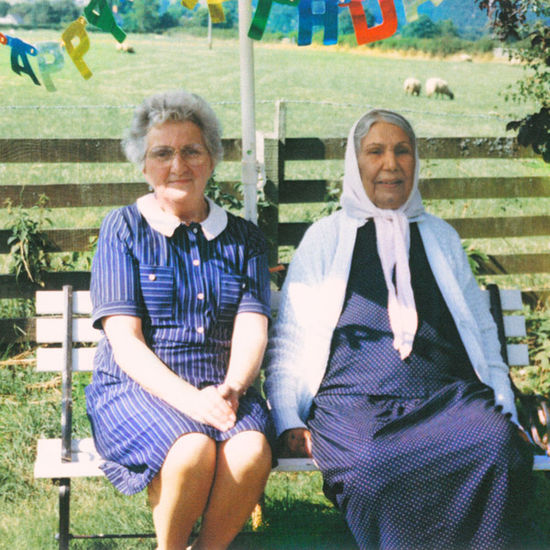 Dauwd: Theory of Colours