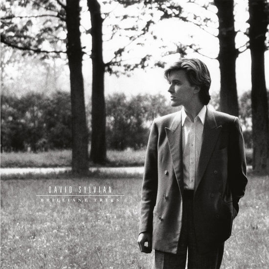 David Sylvian: Brilliant Trees
