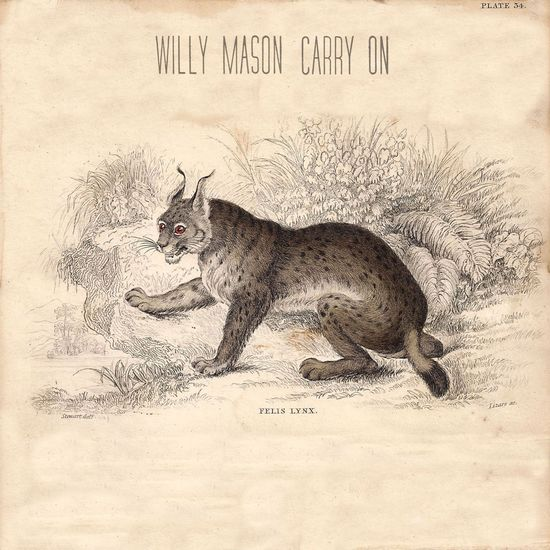 Willy Mason: Carry On CD