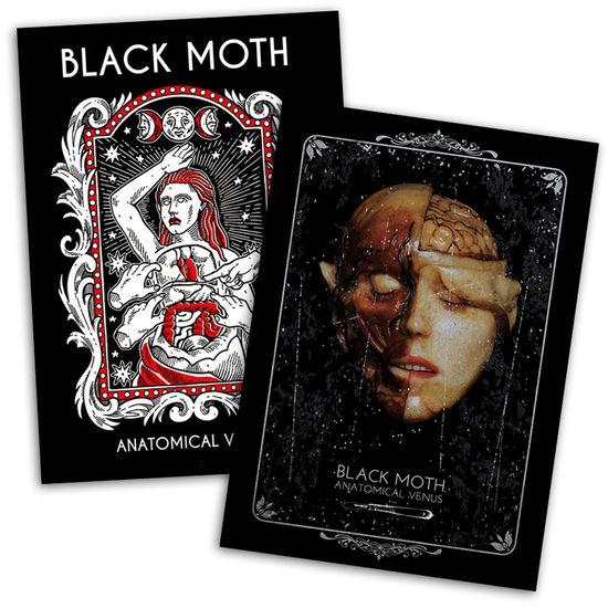 Black Moth: Black Moth Anatomical Venus Signed Poster Bundle