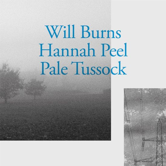 Will Burns and Hannah Peel: Pale Tussock