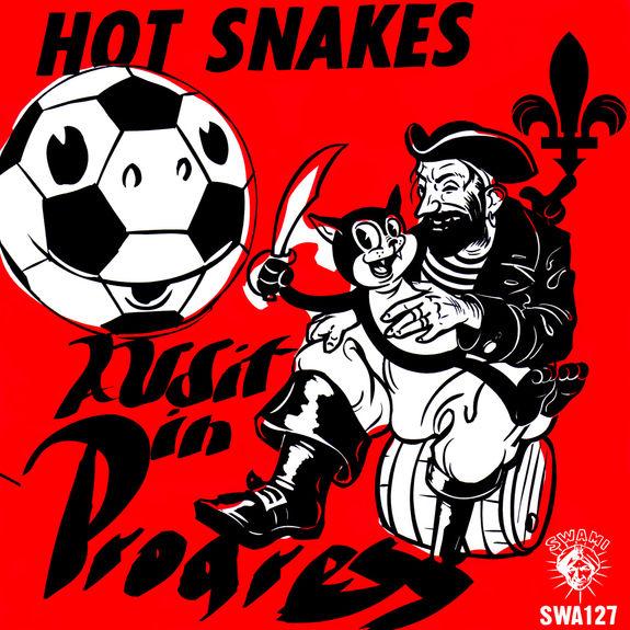 Hot Snakes: Audit in Progress