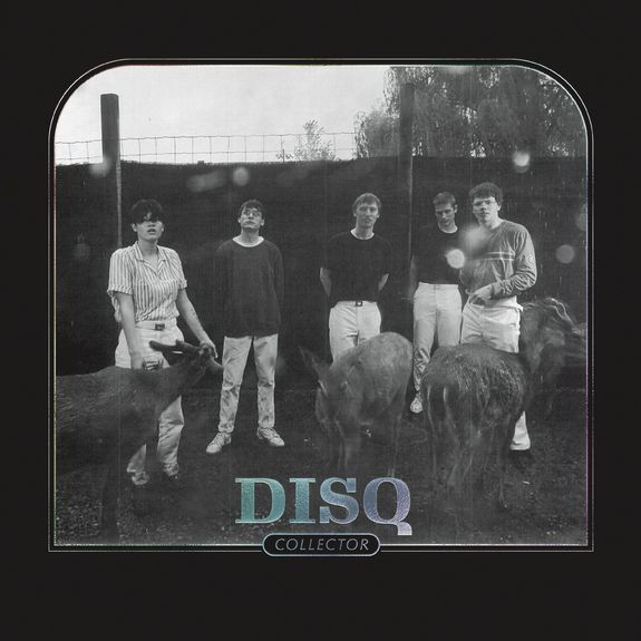 DISQ: Collector: Limited Edition Transparent Blue Vinyl