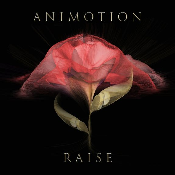 Animotion: Raise