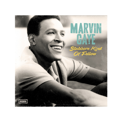 Marvin Gaye: Stubborn Kind of Fellow