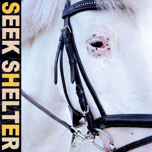 Iceage: Seek Shelter: CD
