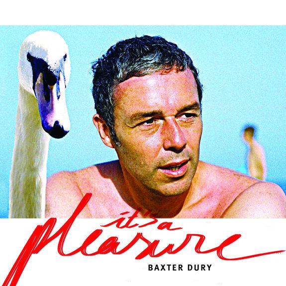 Baxter Dury: It's A Pleasure