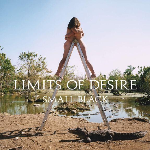 Small Black: Limits of Desire