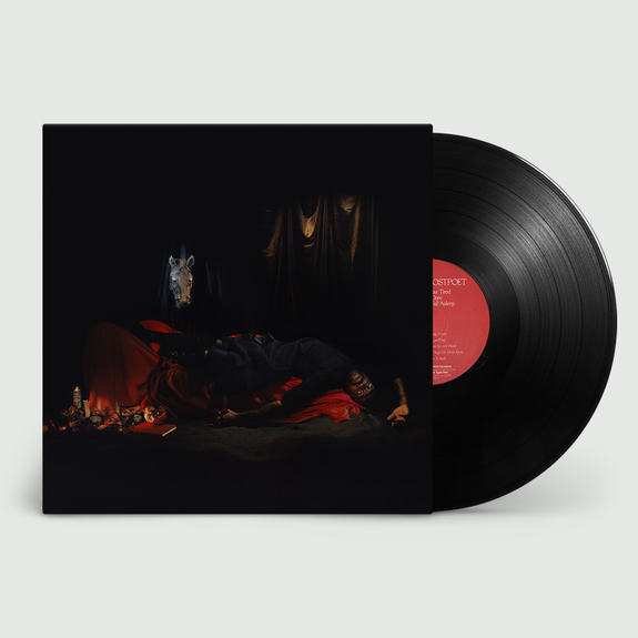 Ghostpoet: I Grow Tired But Dare Not Fall Asleep: Black Vinyl + Exclusive Signed Print