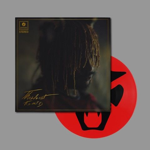 Thundercat: It Is What It Is: Limited Edition Picture Disc in Gatefold Sleeve