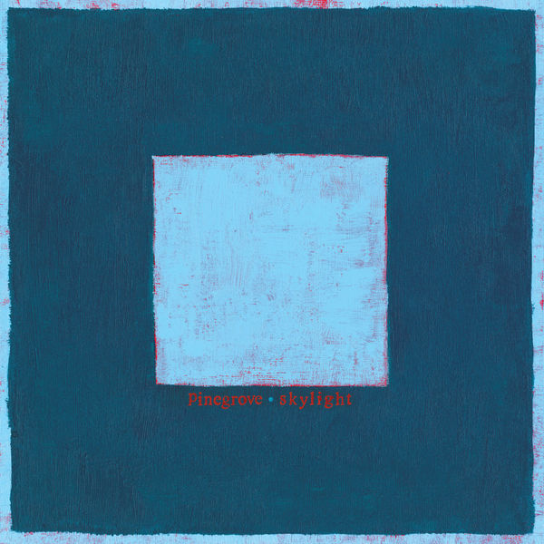 Pinegrove: Skylight: Limited Double Clear Vinyl