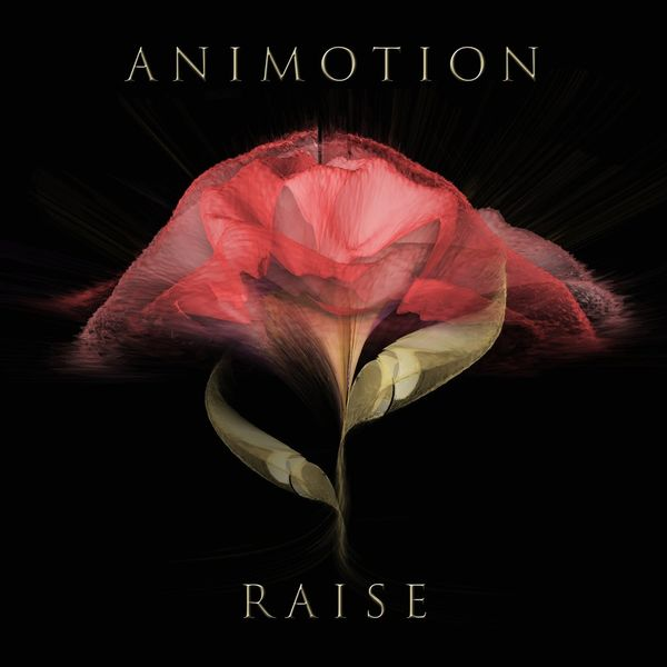 Animotion: Raise
