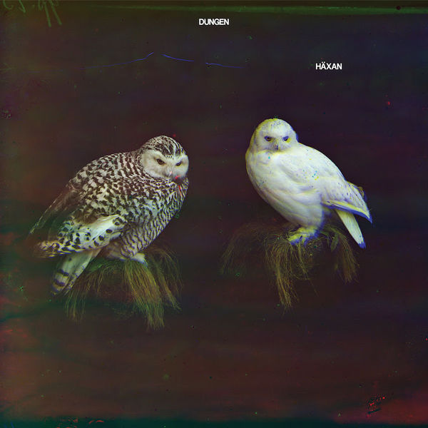 Dungen: Häxan: Black Vinyl