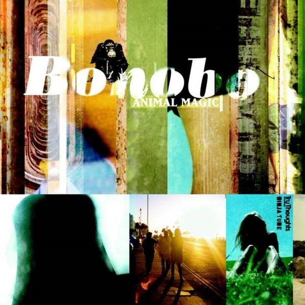 Bonobo: Animal Magic: Limited Edition Yellow Vinyl